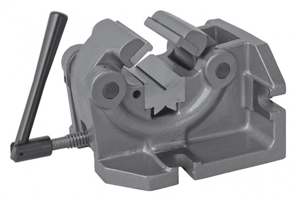 Wellenschraubstock Typ 6546-100
