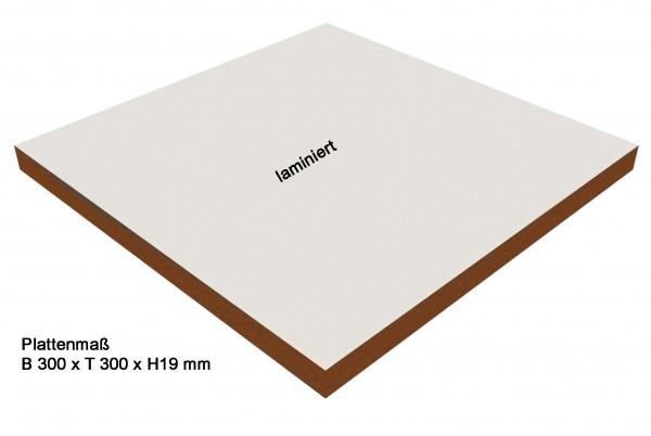 MDF- Werkzeugplatten B 300 x T 300 x H 19 mm einzeln